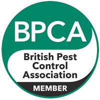 BPCA copy